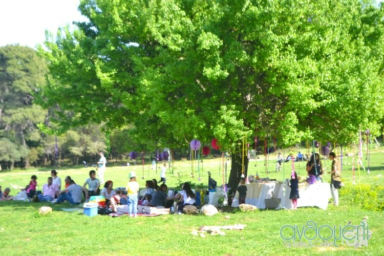 picnic_day_bloggers 1