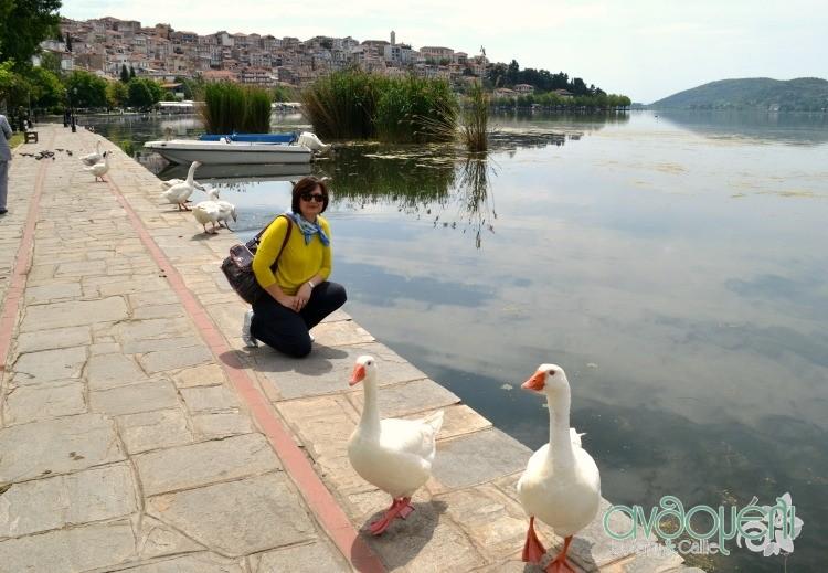 Kastoria_22