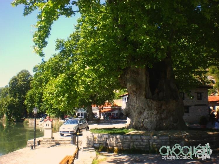 Kastoria_42