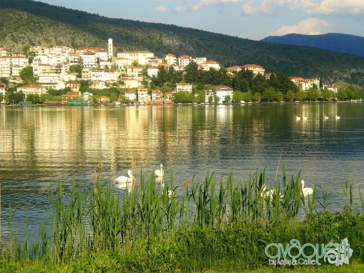 Kastoria_8