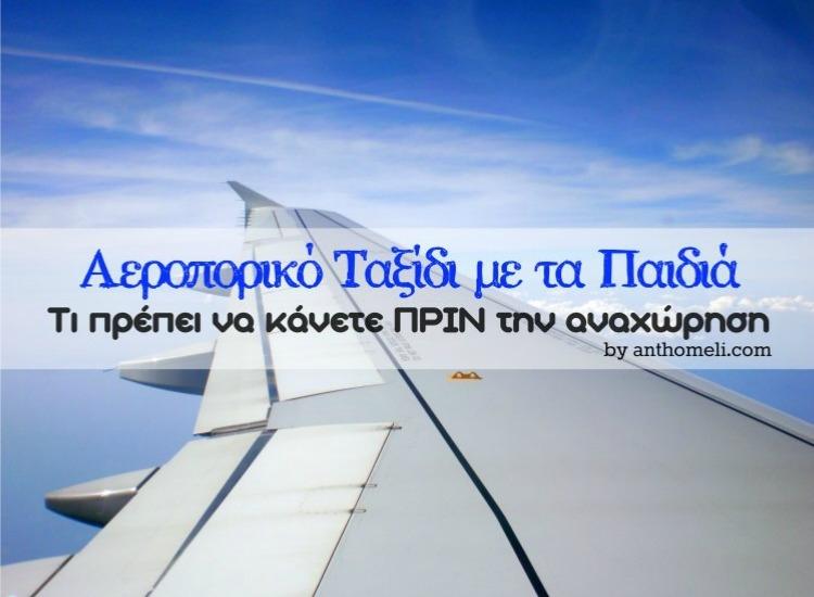aeroplano_taksidi_anthomeli