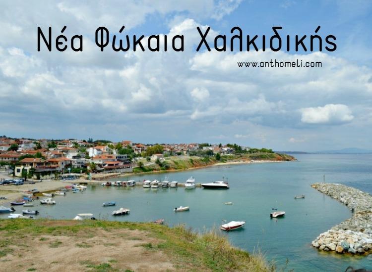Nea_fokea_halkidikis