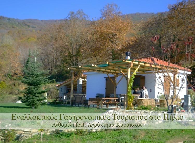 agroktima_karaiskou_portaria_13