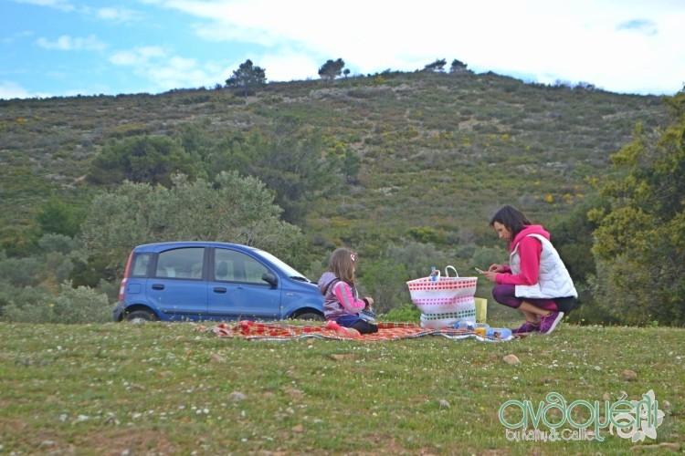 picnic_marathonas_9