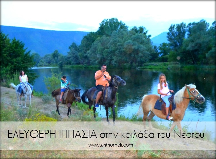 eleftheri_ipasia_stavroupoli