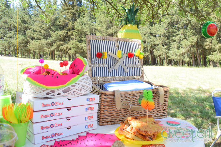 teleio_picnic_deka_vimata (12)