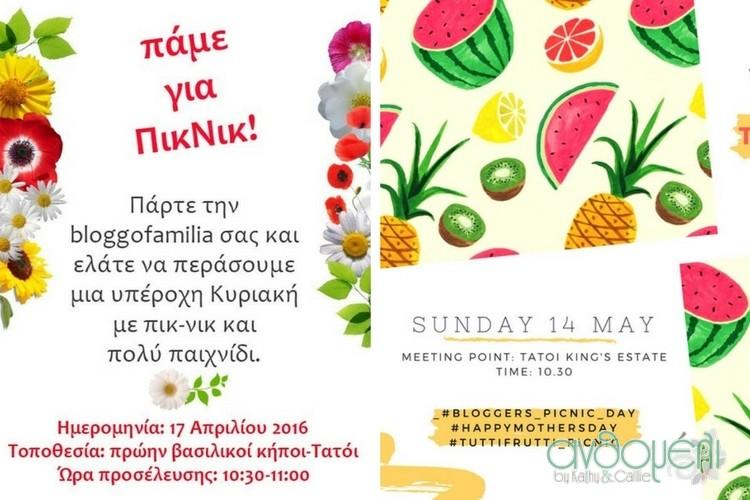 teleio_picnic_deka_vimata