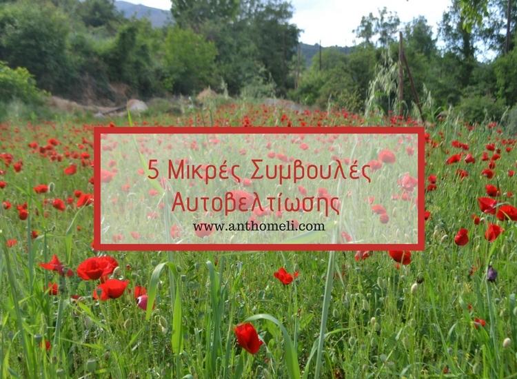mikres_symvoules_aftoveltiosis (2)