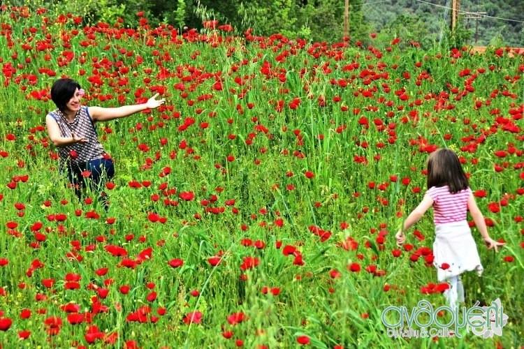 20_idees_gia_yperoches_paidikes_photografies_11