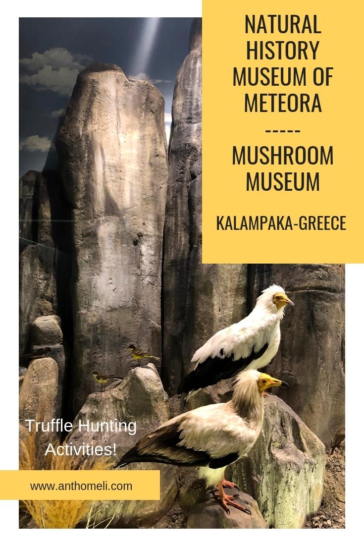 kalampaka_meteora_museum