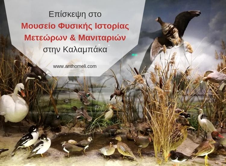 mousio_fisikis_istorias_meteoron_ke_manitarion_kalabaka