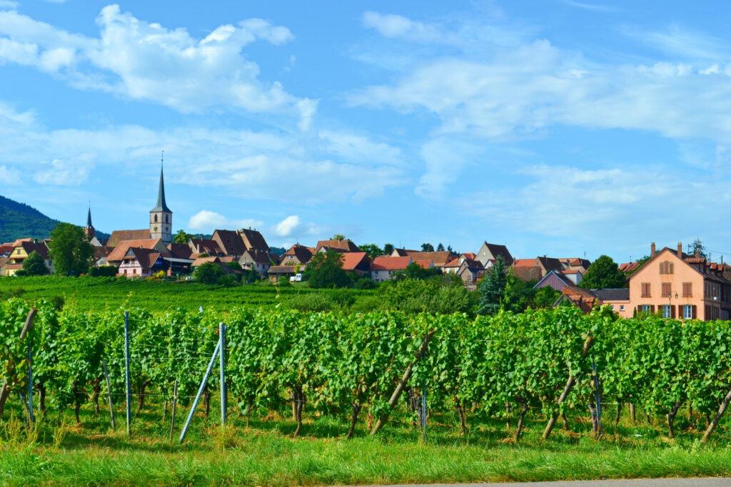 Αλσατία, ο δρόμος του κρασιού (Route de vine d' Alsace).