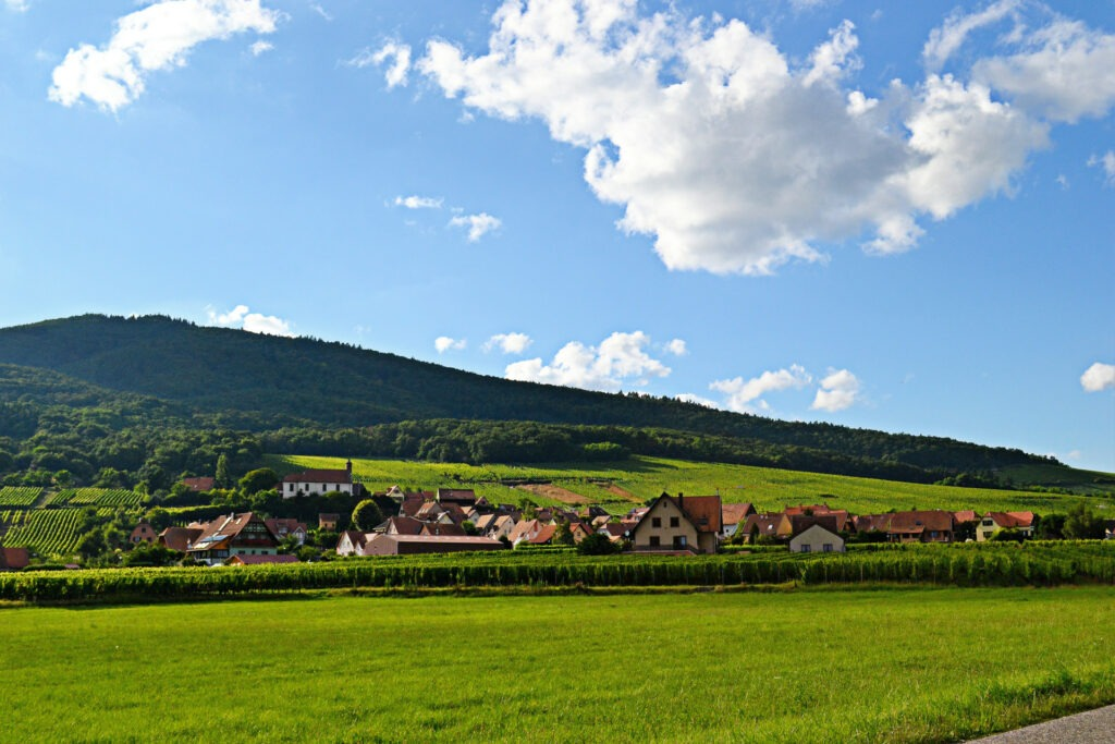 Αλσατία, ο δρόμος του κρασιού (Route de vine d' Alsace)